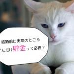 【貯金】結婚前に各自最低50万円あれば結婚できるぞ!