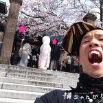 【金沢ひがし茶屋街 / パワースポット】恋愛成就を願う37歳、宇多須神社(うたすじんじゃ)を参拝!