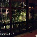【金沢市主計町茶屋街バー】Bar一葉(ひとは)はお一人でも安心してお酒と会話が楽しめるよ!