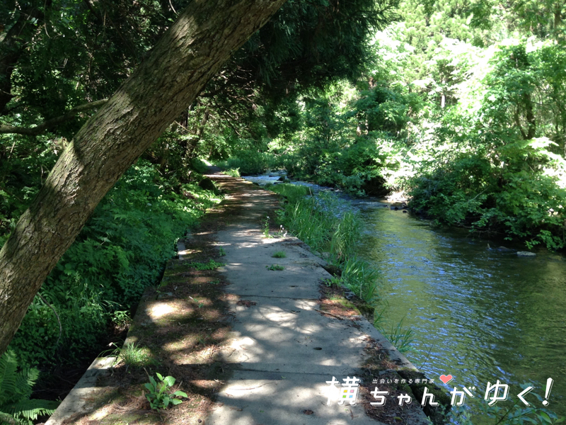 宮島峡14