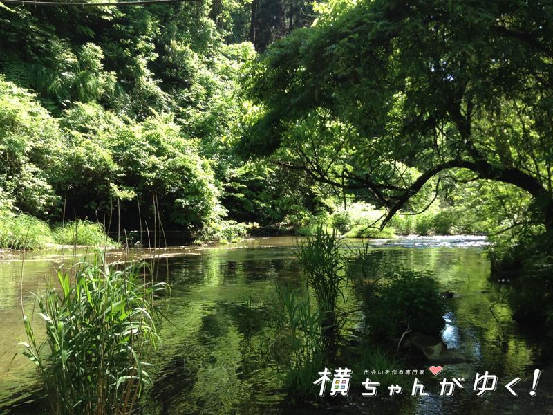 宮島峡19