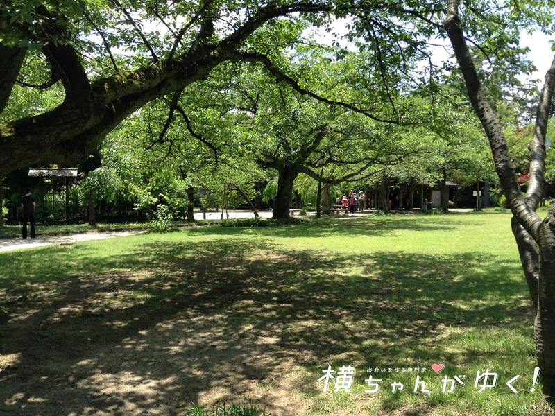 高岡古城公園とは
