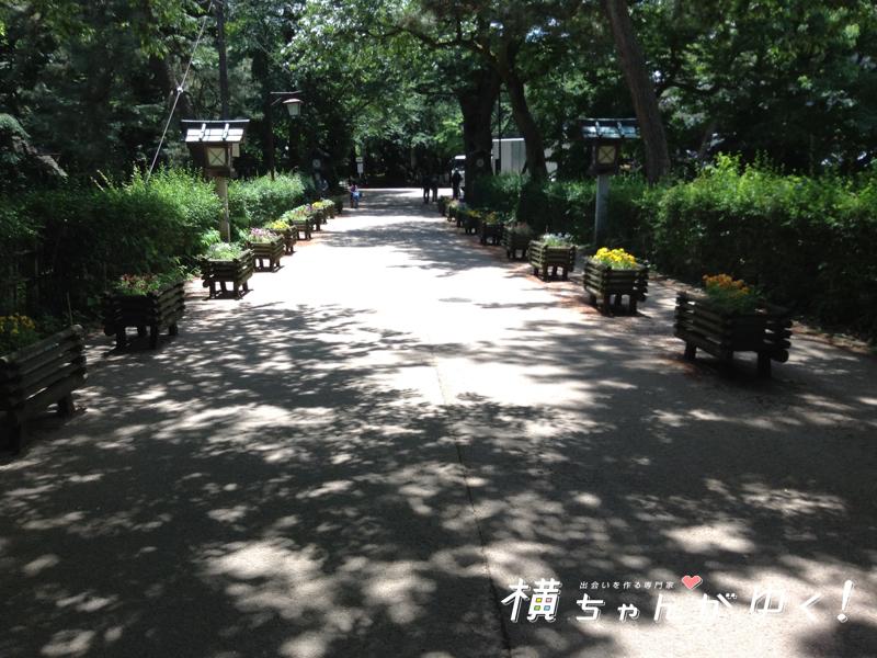 射水神社5