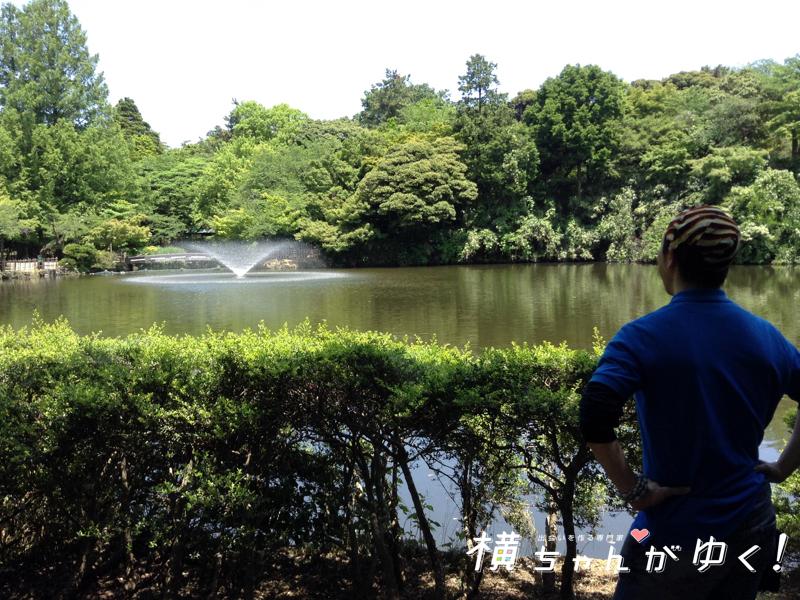高岡古城公園14