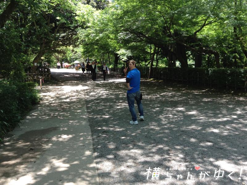 高岡古城公園7