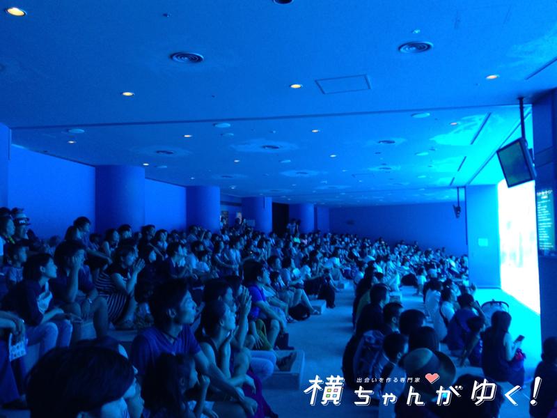 名古屋港水族館14