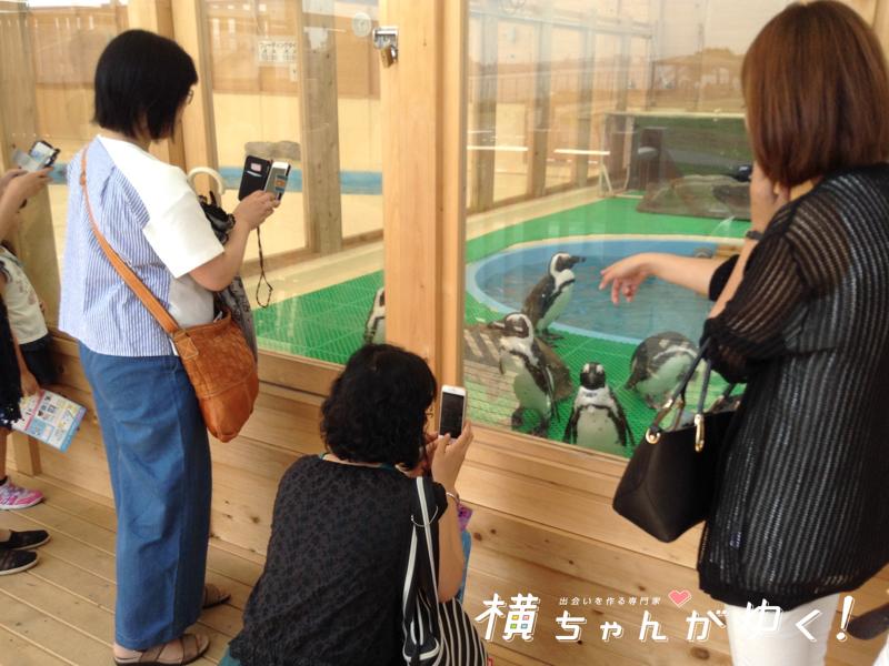 名古屋港水族館25