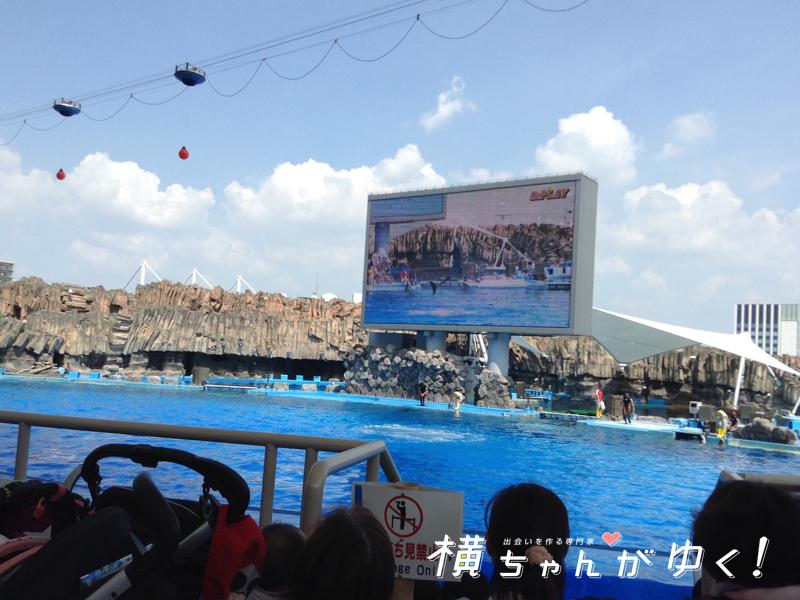 名古屋港水族館20