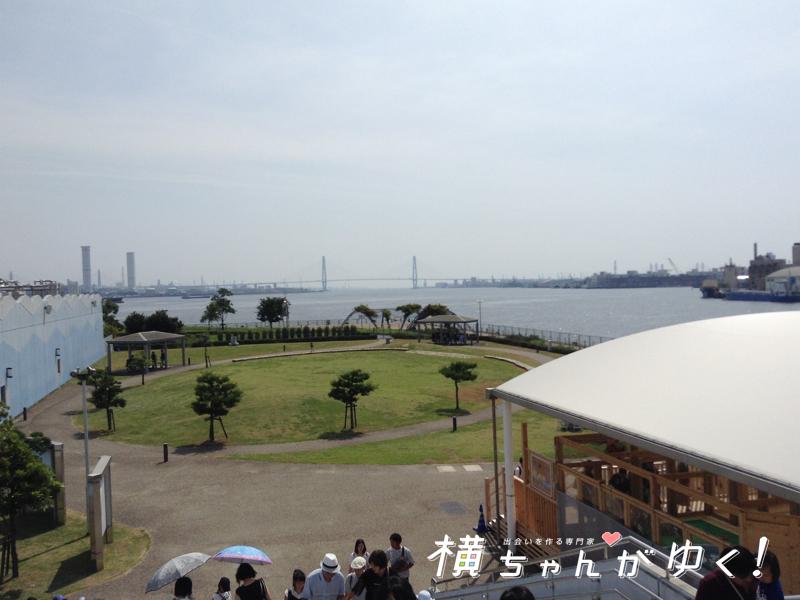 名古屋港水族館23