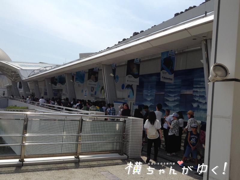 名古屋港水族館8