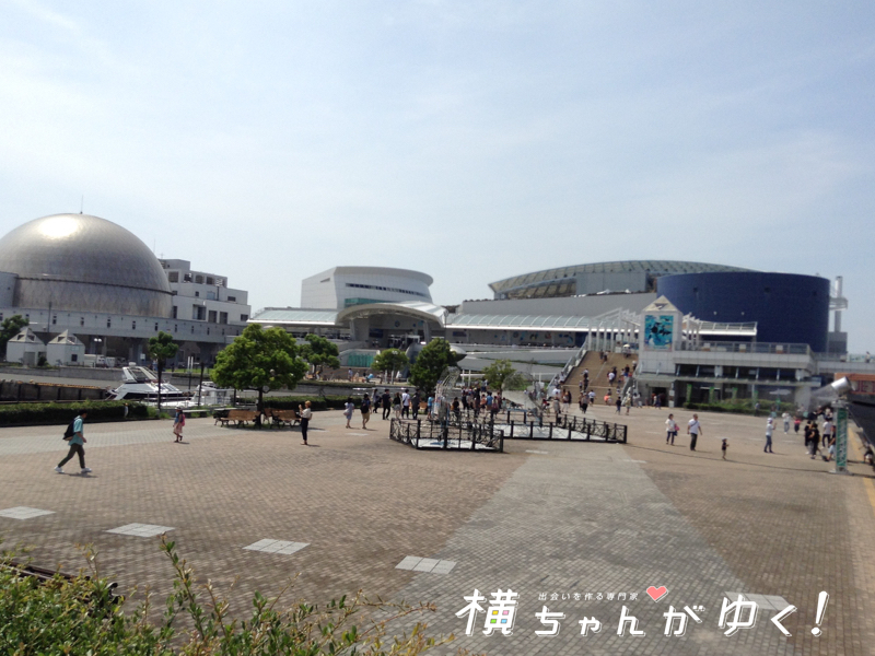 名古屋港水族館5