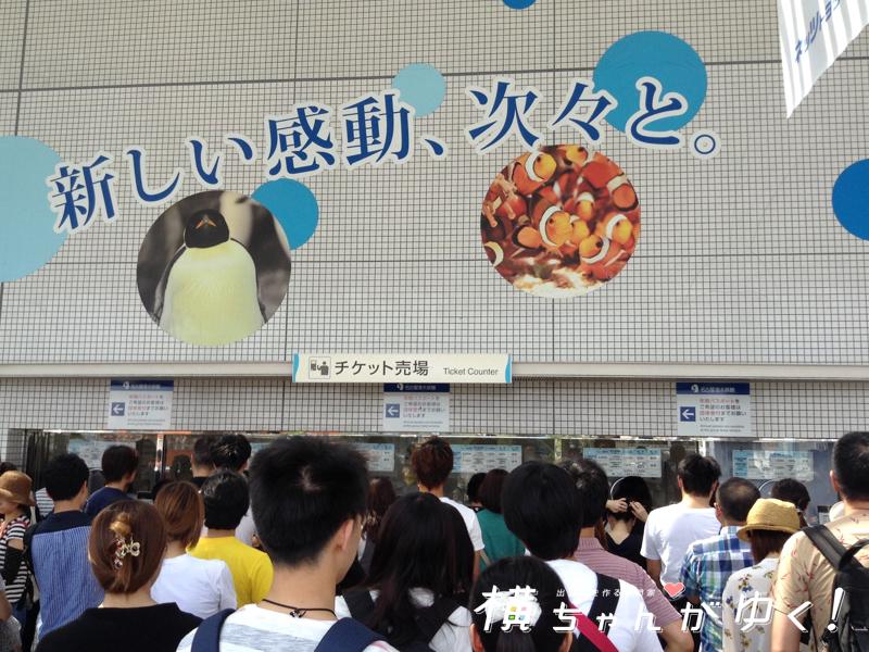 名古屋港水族館9