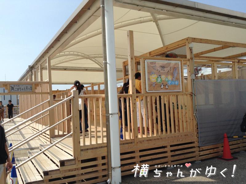 名古屋港水族館24