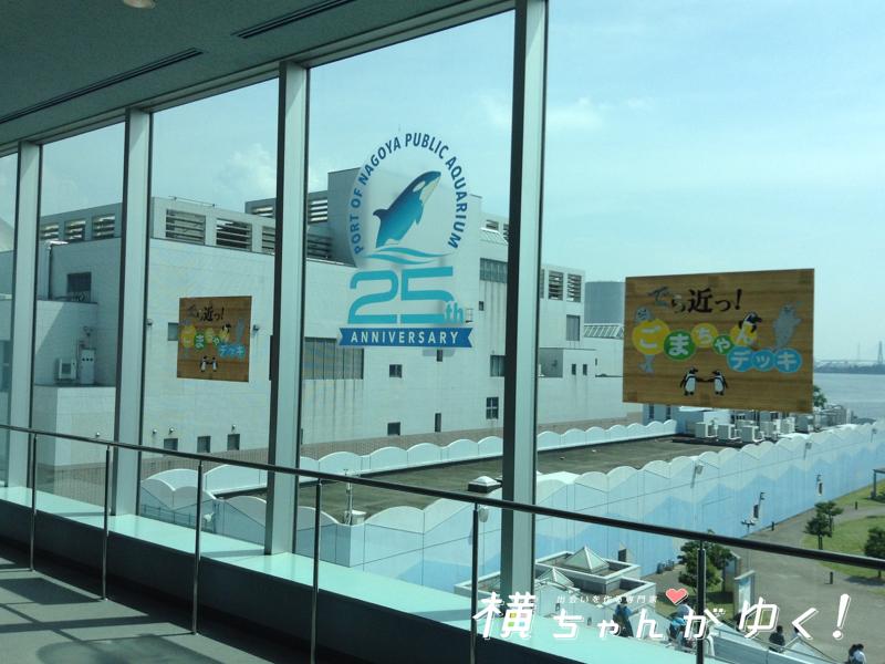 名古屋港水族館18
