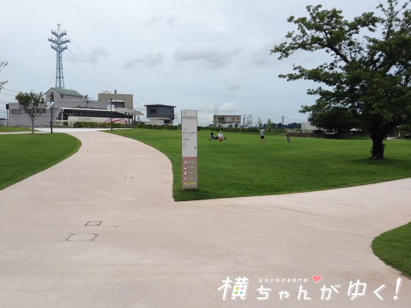 環水公園3