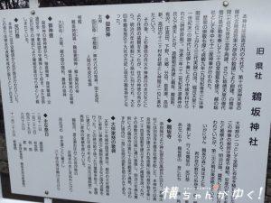 鵜坂神社4