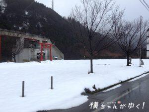 鯉恋の宮3
