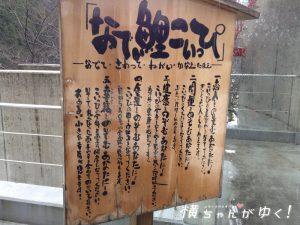 鯉恋の宮23