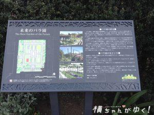 山下公園3