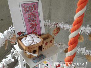 鯉恋の宮12