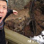 【仙台市秋保温泉 パワースポット】恋人の聖地「覗橋(のぞきばし)♡ハート」が雪で凍り付いてたよ!