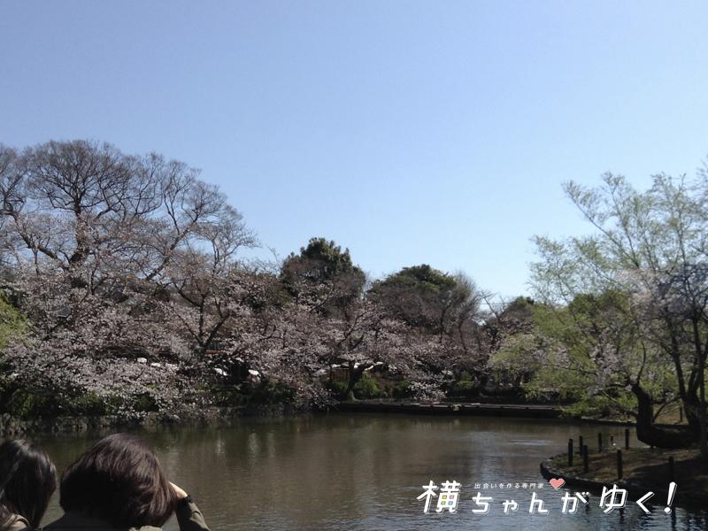 鶴岡八幡宮16