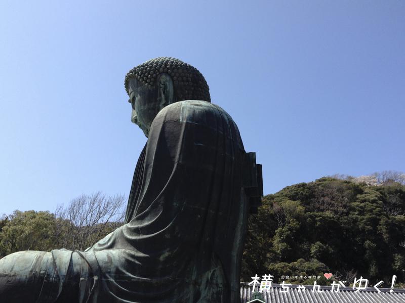 鎌倉大仏11