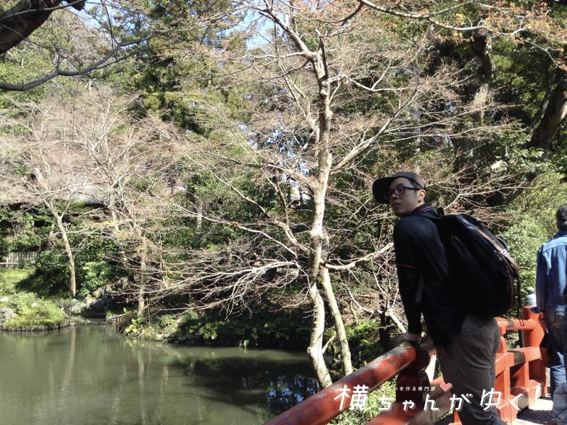 鶴岡八幡宮15
