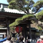 【神奈川県鎌倉市パワースポット】そうだ長谷寺へゆこう!眺望散策路からの景色は圧巻なり〜♪