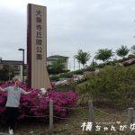 【金沢市南部の散策デートスポット】GWは大乗寺丘陵公園にて、約13000株のツツジを眺め〜の♪