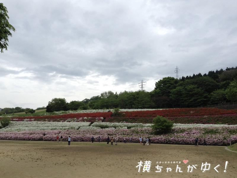 大乗寺丘陵公園9