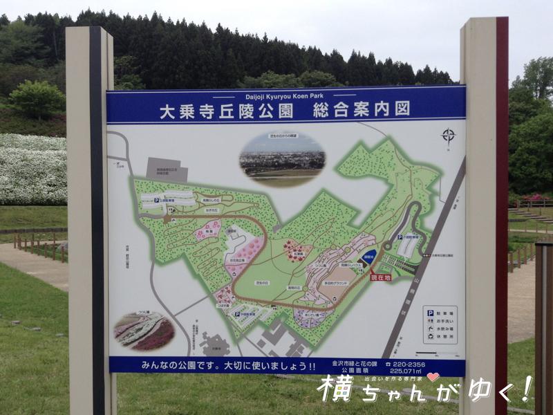 大乗寺丘陵公園5
