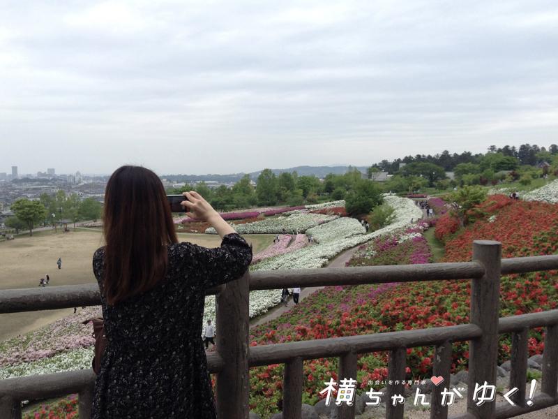 大乗寺丘陵公園23