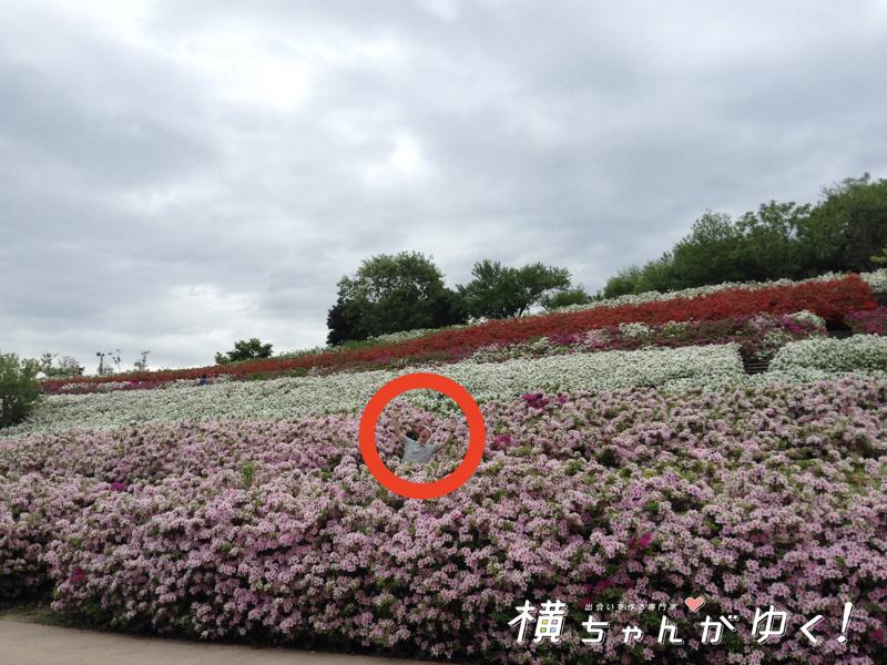 大乗寺丘陵公園10