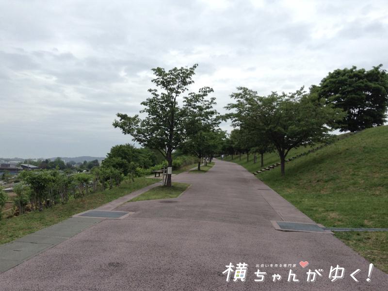 大乗寺丘陵公園7