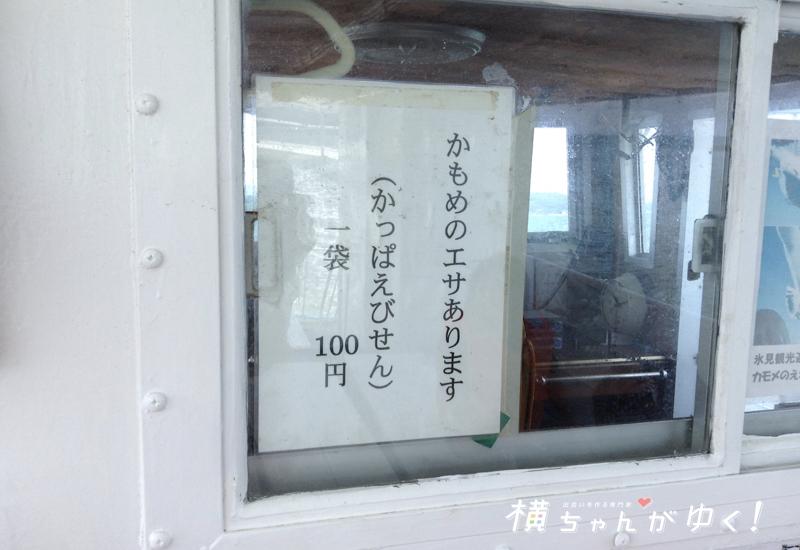 氷見沖クルージング11