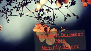 11月12月
