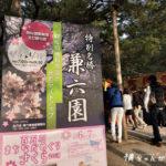 【金沢城兼六園 ライトアップ春】春だ!桜だ!お花見フォトをそれっぽ〜く撮ってきた、の巻〜♪